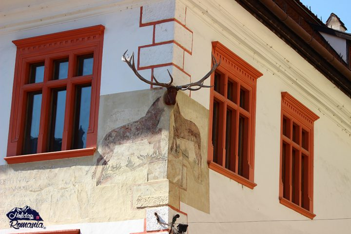 House with Antler in Sighisoara by Holiday to Romania